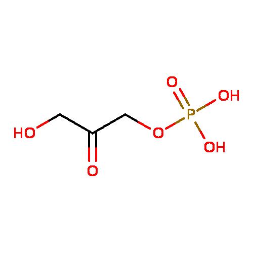 dihydroxyacetone phosphate ymdb00322 yeast metabolome database
